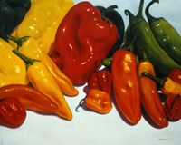 All Kinds of Peppers Fine Art Print