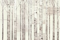 Birch Trees on White by Avery Tillmon - various sizes, FulcrumGallery.com brand