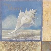 Ocean Beauties I by Art Licensing Studio - various sizes