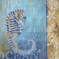 Sea Horse and Sea Fine Art Print
