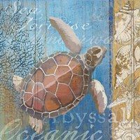Turtle and Sea Framed Print