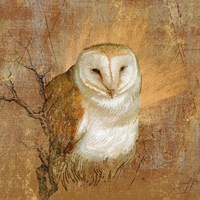 Owl in the wood by Art Licensing Studio - various sizes, FulcrumGallery.com brand
