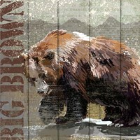 Open Season Bear Fine Art Print