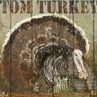 Open Season Turkey Fine Art Print