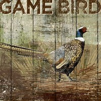 Open Season Pheasant Fine Art Print
