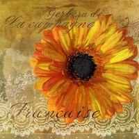 Gerbera Francaise by Art Licensing Studio - various sizes
