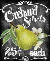 Orchard Selects by Art Licensing Studio - various sizes