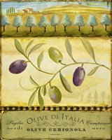 Olive Grove Puglia by Art Licensing Studio - various sizes
