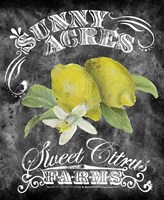 Sunny Acres Fine Art Print