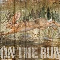 Rabbit on the Run by Art Licensing Studio - various sizes