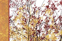 Painted Branches by Erin Clark - various sizes