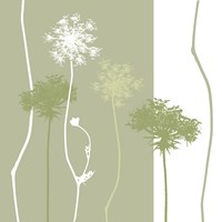 Queen Anne's Lace by Erin Clark - various sizes