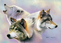 Wolves are Forever Fine Art Print