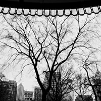 Park View I by Erin Clark - various sizes