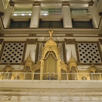 Organ Fine Art Print