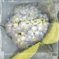 Antique Bloom by Erin Clark - various sizes, FulcrumGallery.com brand