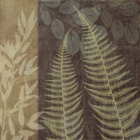 Ferns I by Erin Clark - various sizes - $28.49