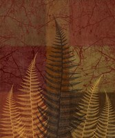 Ferns II by Erin Clark - various sizes - $31.49