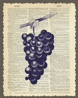 Grapes by Erin Clark - various sizes, FulcrumGallery.com brand