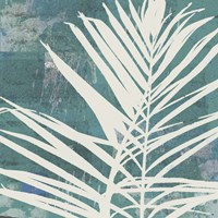 Fronds on Azure Fine Art Print