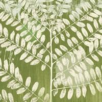 Jade Foliage Framed Print