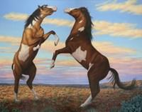 Boxing Horses Fine Art Print