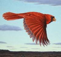 Flight by James W. Johnson - various sizes