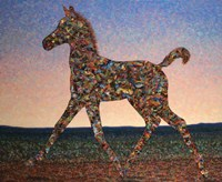 Foal Spirit by James W. Johnson - various sizes