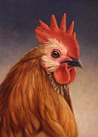 Rooster by James W. Johnson - various sizes