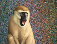 Yawn by James W. Johnson - various sizes, FulcrumGallery.com brand