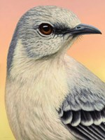 Mocking Bird by James W. Johnson - various sizes, FulcrumGallery.com brand