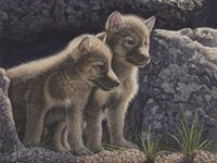 Wolf Pups by Jeffrey Hoff - various sizes