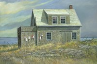 Island Rental by Jerry Cable - various sizes