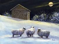 January Fleece Fine Art Print