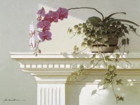 Orchid On Mantle by Zhen-Huan Lu - various sizes - $29.99