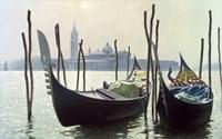 Gondolas, Venice Fine Art Print