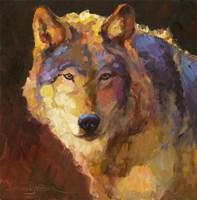 Amadeus Wolf Fine Art Print