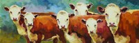 Cattle Call Fine Art Print