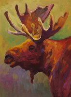 Moose by Sarah Webber - various sizes