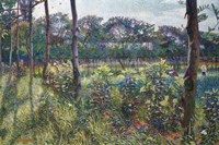 Lombardy Countryside Fine Art Print