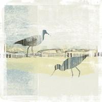 Coastal Birds I Fine Art Print
