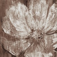 Confetti Bloom II Fine Art Print