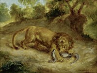 Lion and Cayman, 1855 by Eugene Delacroix, 1855 - various sizes