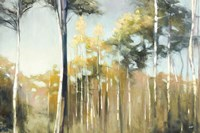 Aspen Reverie by Julia Purinton - various sizes