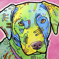 Labrador by Dean Russo - various sizes