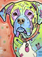 The Boxer Fine Art Print