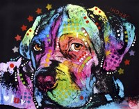 Young Mastiff by Dean Russo - various sizes