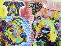 Thoughtful Pit Bull This Years Love 2013 Part 3 Fine Art Print