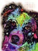 Aussie Fine Art Print