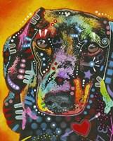 Brilliant Dachshund Fine Art Print